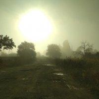 Утро  туманное,  тем самым загадочное... :: Marusya Boguslavka