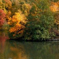 Бушует Осень :: Vera Ostroumova