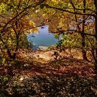 Осенняя картинка :: Владимир Кроливец