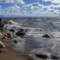 берег финского залива :: Георгий