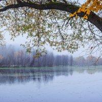 Осень... Утро... :: Евгений Осипов