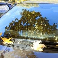 Осень на стекле... :: ТатьянА А...