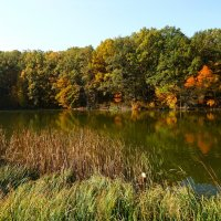 Осень на озёрах :: Ирина