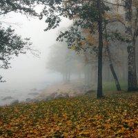 Финский залив в тумане :: Ирина Румянцева