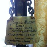 *** :: Татьяна Юрасова