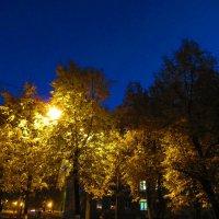 Вечерний город :: Татьяна Гусева