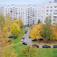 А из моего окна осень в городе видна! :: Андрей Самуйлов