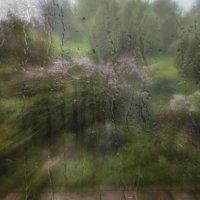 Дождь за окном :: Татьяна Смирнова