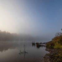 Утро туманное... :: Елена Струкова