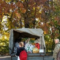 Горожане собрали еду для животных из приюта :: Галина Бобкина