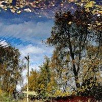 Осенний пейзаж :: Леонид leo