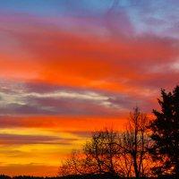 утро осеннего дня :: леонид логинов