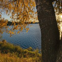 осенний пейзаж у озера :: Владимир Ефимов