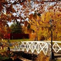 Мост :: Lersa