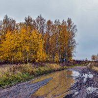 Золотая осень... :: АЛЕКСАНДР СУВОРОВ