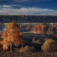 15 октября - осеннее равновесие :: Va-Dim ...