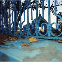 Ограда храма. :: Любовь