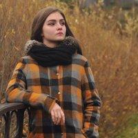 Адель (2) :: Оксана Полякова