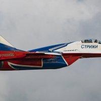 "Миг - 29 ""Стриж"" :: Roman Galkov"