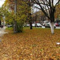 Осень в городе :: Galaelina ***