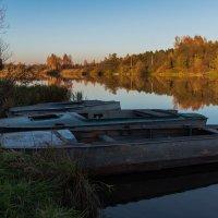 Тёплым,осенним днём на реке Дубне. :: Виктор Евстратов