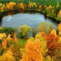 Лесное озеро :: Александр Михайлов