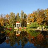 Отражается осень в пруду. :: Ирина
