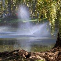 Пейзаж с фонтанами. :: barsuk lesnoi