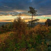 Осеннее разноцветье :: vladimir Bormotov