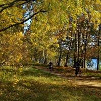 Осень на озере. :: Олег Пучков
