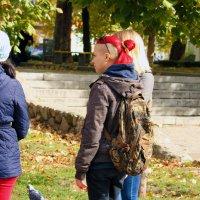 Осенний покрас... :: barsuk lesnoi