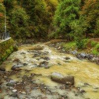 Горные реки Грузии :: Marina Timoveewa