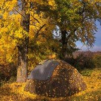 Осенний стожок :: Владимир Макаров