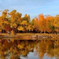 Осень на озере :: Mikhail Irtyshskiy