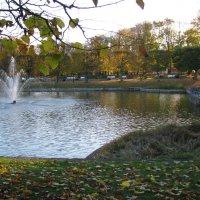 Утром в парке :: Владислав