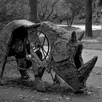Носорог :: Сергей Карачин