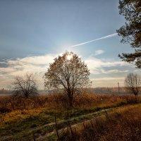 img_8379 :: Сергей Козлов