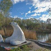 Умка со своей мамой на берегу озера семи ключей. :: Михаил Полыгалов