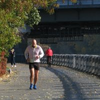 Осенний марафон :: Grey Bishop
