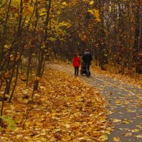 Осень года и весна жизни :: Андрей Лукьянов