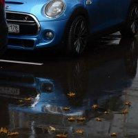 Дождь :: Марина Лучанская