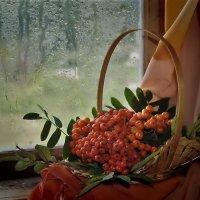 Осень - дождливая пора. :: Татьяна Глинская