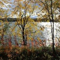 Осенняя картина :: Ольга