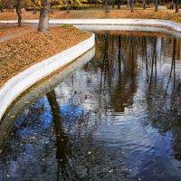 Осень. Утки на пруду. :: Valeriy(Валерий) Сергиенко