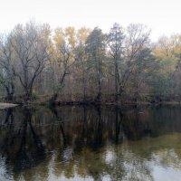 осень :: Елена Иванкина