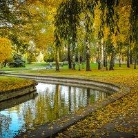Золотая осень. :: Nonna