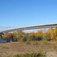 Балаково,Саратовская область :: tgtyjdrf