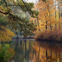 Осень на пруду :: Александр