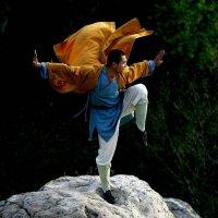 Практикующий монах :: dindin