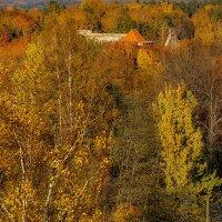 Latvia 2018 Autumn in Sigulda 10 :: Arturs Ancans